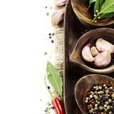 Herbes et épices fraîches Image libre de droits