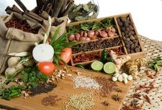 Herbes et épices fraîches Image stock