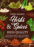 Herbes et épices organiques, marché d'assaisonnements illustration libre de droits
