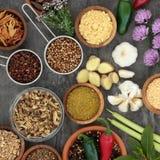 Herbes et épices pour la cuisson Photos libres de droits