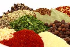 Herbes et épices sèches étroitement vers le haut Images stock