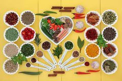 Herbes et épices saines Image libre de droits