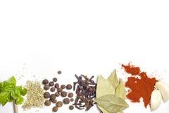Herbes et cadre d'épices Photo libre de droits