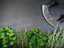 Herbes et coupeur sur le fond d'ardoise Photos stock