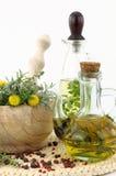 Herbes et huile de cuisine Photo stock