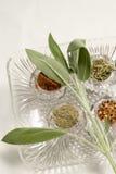 Herbes et spicies photos libres de droits