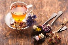 Herbes et thé de fines herbes Photographie stock