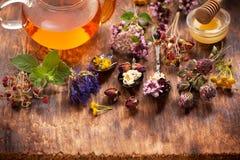 Herbes et thé de fines herbes Photo stock
