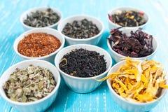 Herbes et thés dans des cuvettes pour faire le thé sur le Cl bleu de fond de table Photos stock