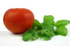 Herbes et tomate photos stock