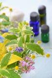 Herbes et traitement d'aromatherapy photo libre de droits