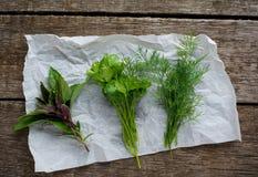 Herbes fraîches Aneth, basilic et persil sur rustique Image stock