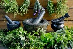 Herbes fraîches avec le mortier et le pilon sur le fond en bois rustique images stock