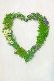 Herbes fraîches dans la forme du coeur d'amour Image stock