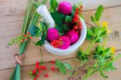 Herbes fraîches dans le mortier images stock
