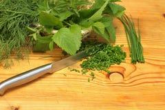 Herbes fraîches dans une cuisine Images stock