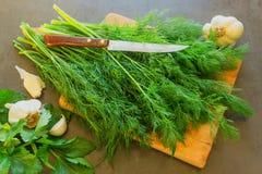 Herbes fraîches sur une planche à découper Est après un couteau et les épices dans a Photo stock