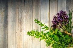 Herbes fraîches sur une table en bois Images libres de droits