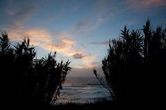 Herbes grandes, coucher du soleil atlantique Photographie stock libre de droits