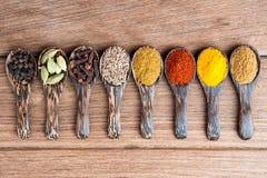 Herbes indiennes de mélange sur la cuillère Images libres de droits