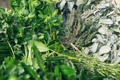 Herbes italiennes photo stock