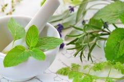 Herbes médicales photo stock