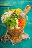 Herbes médicinales fraîches d'été sur le fond en bois images libres de droits