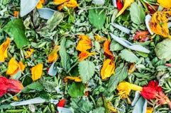 Herbes mélangées sèches image stock
