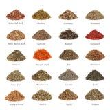 Herbes médicinales et magiques Image stock