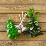 Herbes organiques Photo libre de droits