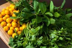 Herbes pour faire cuire le tkemali de sauce Image libre de droits