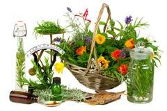 Herbes pour la médecine Photographie stock libre de droits