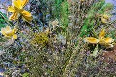Herbes récemment récoltées, cadre d'herbes au-dessus du fond blanc photographie stock