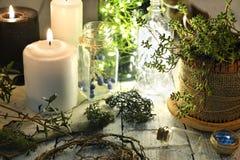 Herbes, racines, baies et bougies brûlantes sur la table de sorcière photo libre de droits