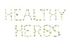 herbes saines Image libre de droits