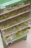Herbes sauvages écologiques, saines et nutritives de séchage de nourriture dans le dessiccateur photo libre de droits