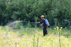 Herbicidas que pintan (con vaporizador) de la mujer campesina Fotografía de archivo libre de regalías
