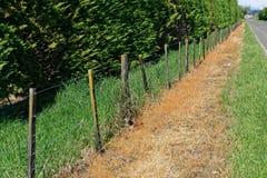 Herbicidegebruik op een de kant van de wegrand van Nieuw Zeeland stock afbeeldingen