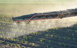 Herbicides spraying Royalty Free Stock Photography