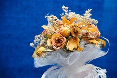 Herbier d'un bouquet de mariage Images libres de droits