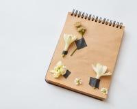 Herbier sur le papier Photographie stock