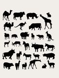Herbivorous Silhouettes. Art vector design Stock Photography