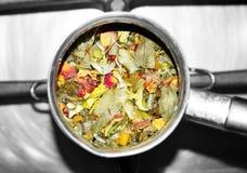 Herbs_01 Imagen de archivo