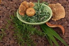 Herbs. And dry mushroom on cork mat Royalty Free Stock Photo