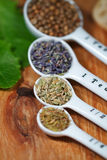 Herbs. Old table-top selection of herbs and grains in measuring spoons Stock Image