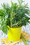 Herbs. Royalty Free Stock Image