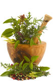 Herbs. Healing herbs, spices, and edible flowers (hand carved olive tree mortar and pestle Stock Image