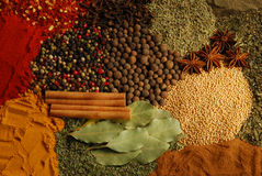 Herbs. Various herbs and spices including pepper, aniseed, basil, cinamon and others Stock Photo