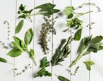herbs fotos de stock