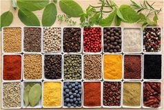 Herbs ang spices. Herbs and spices in rectangular ceramic containers stock photo